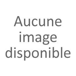 Roche and Roll bloc d'Alun 150g avec bague